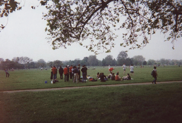 More People Gather on the Grass